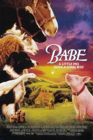 Babe_le_cochon_devenu_berger